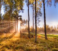 Sverigepumpen Frigovent välja luftvärmepump